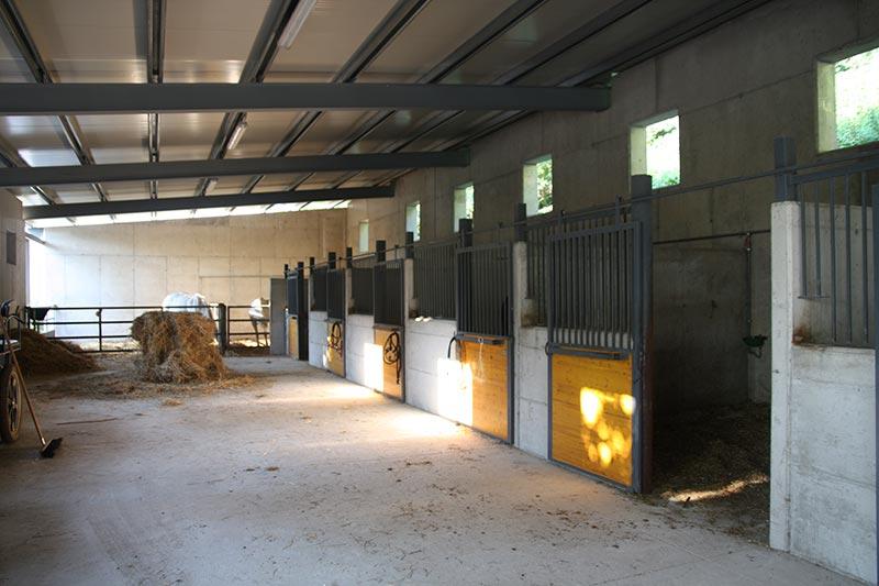 Azienda ranch il Bosco