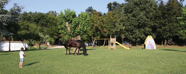 Trakking a cavallo